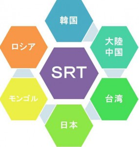 SRT構造図